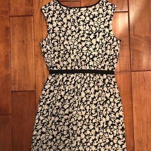 Ann Taylor LOFT Dress Sz Small Black & Cream